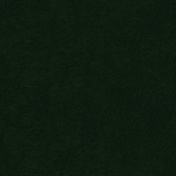 Nofruit Velours Fles Groen 038